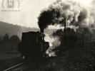 Parní lokomotiva 423.096