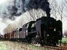 Parní lokomotiva 534.0307