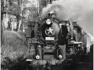 Parní lokomotiva 556.0251