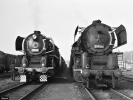 Parní lokomotiva 556.0296 a 556.0316